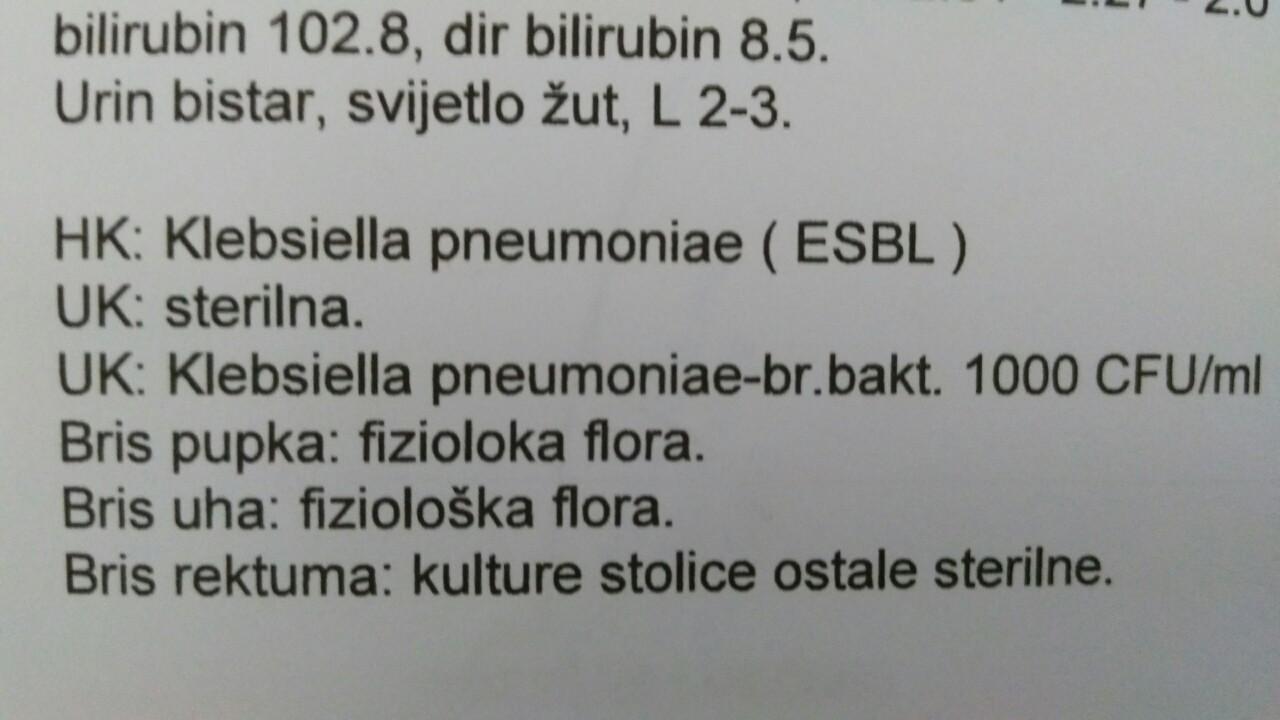 Foto: www.dnevni-list.ba
